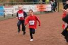 Crosslauf 2012