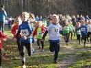 15.12.2019 - Crosslauf Papenburg